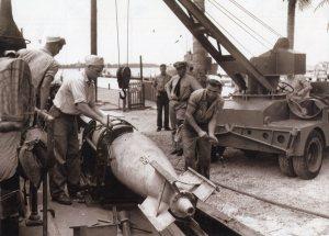 Torpedo inspection